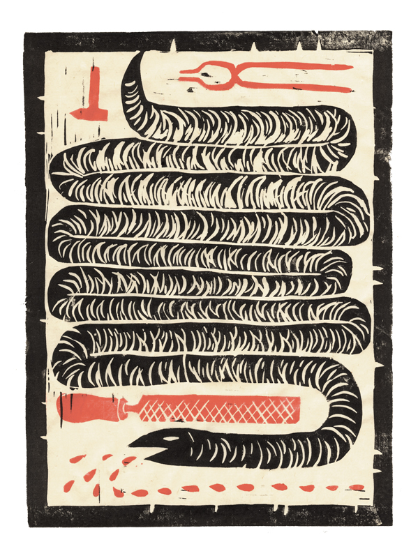 slangen2-